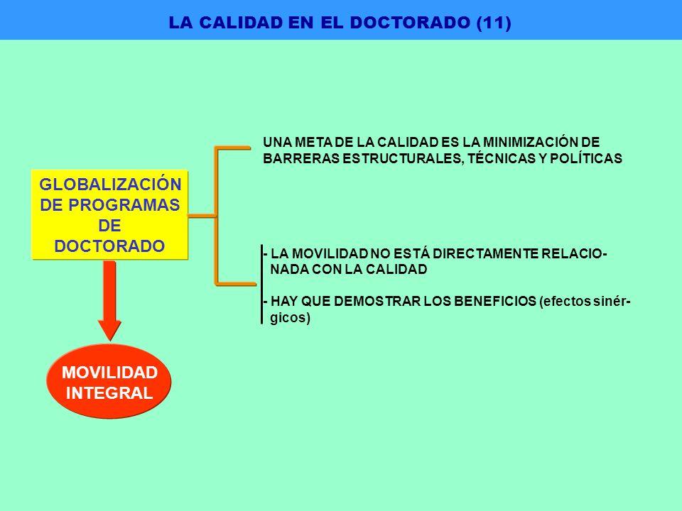 UNA META DE LA CALIDAD ES LA MINIMIZACIÓN DE BARRERAS ESTRUCTURALES, TÉCNICAS Y POLÍTICAS - LA MOVILIDAD NO ESTÁ DIRECTAMENTE RELACIO- NADA CON LA CALIDAD - HAY QUE DEMOSTRAR LOS BENEFICIOS (efectos sinér- gicos) GLOBALIZACIÓN DE PROGRAMAS DE DOCTORADO MOVILIDAD INTEGRAL LA CALIDAD EN EL DOCTORADO (11)