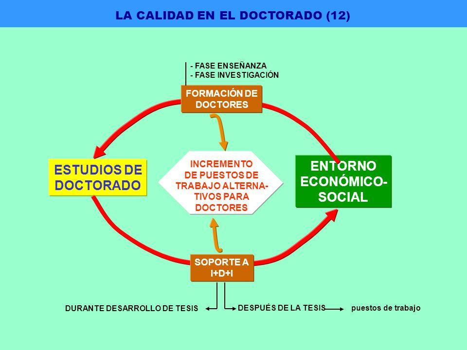 ESTUDIOS DE DOCTORADO ENTORNO ECONÓMICO- SOCIAL LA CALIDAD EN EL DOCTORADO (12) FORMACIÓN DE DOCTORES - FASE ENSEÑANZA - FASE INVESTIGACIÓN SOPORTE A I+D+I DURANTE DESARROLLO DE TESIS DESPUÉS DE LA TESIS puestos de trabajo INCREMENTO DE PUESTOS DE TRABAJO ALTERNA- TIVOS PARA DOCTORES