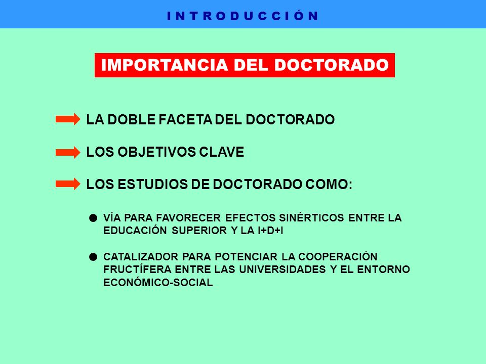 IMPORTANCIA DEL DOCTORADO LA DOBLE FACETA DEL DOCTORADO LOS OBJETIVOS CLAVE LOS ESTUDIOS DE DOCTORADO COMO: VÍA PARA FAVORECER EFECTOS SINÉRTICOS ENTRE LA EDUCACIÓN SUPERIOR Y LA I+D+I CATALIZADOR PARA POTENCIAR LA COOPERACIÓN FRUCTÍFERA ENTRE LAS UNIVERSIDADES Y EL ENTORNO ECONÓMICO-SOCIAL I N T R O D U C C I Ó N