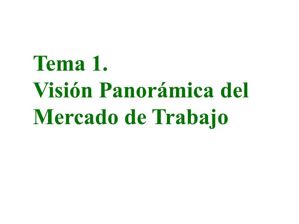 ECONOMIA LABORAL ASPECTOS MICROECONOMICOS ASPECTOS MACROECONOMICOS OFERTA DE TRABAJODEMANDA DE TRABAJO MERCADOS DE TRABAJO DECISIÓN TRABAJO-OCIO TASA DE ACTIVIDAD CALIDAD DEL TRABAJO SISTEMAS DE REMUNERACIÓN ESTRUCTURA SALARIAL MOVILIDAD Y MIGRACIÓN SINDICATOS Y NEGOCIACIÓN COLECTIVA INTERVENCIÓN DEL ESTADO DISCRIMINACIÓN