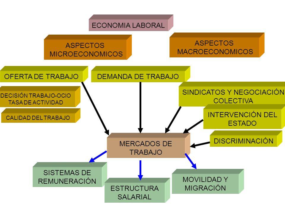 ECONOMIA LABORAL ASPECTOS MICROECONOMICOS ASPECTOS MACROECONOMICOS OFERTA DE TRABAJODEMANDA DE TRABAJO MERCADOS DE TRABAJO DECISIÓN TRABAJO-OCIO TASA