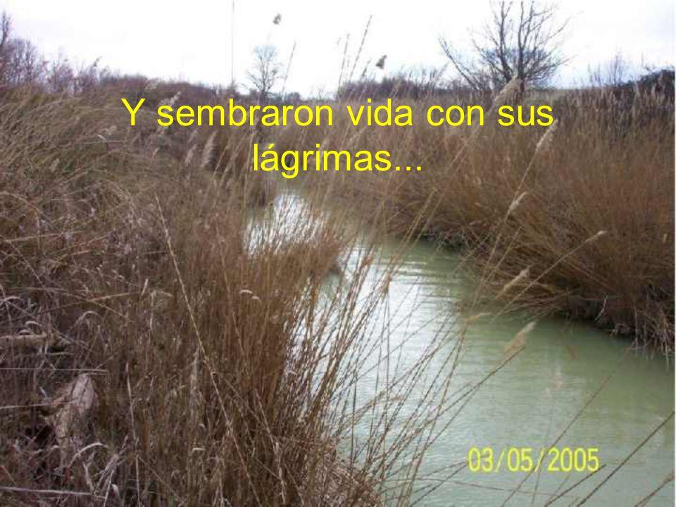 La Confederación Hidrográfica del Ebro está llevando a cabo una operación de dragado en 150 kilómetros de nuestros ríos en las Cinco Villas (Zaragoza) ¡ayúdanos a detenerlos!
