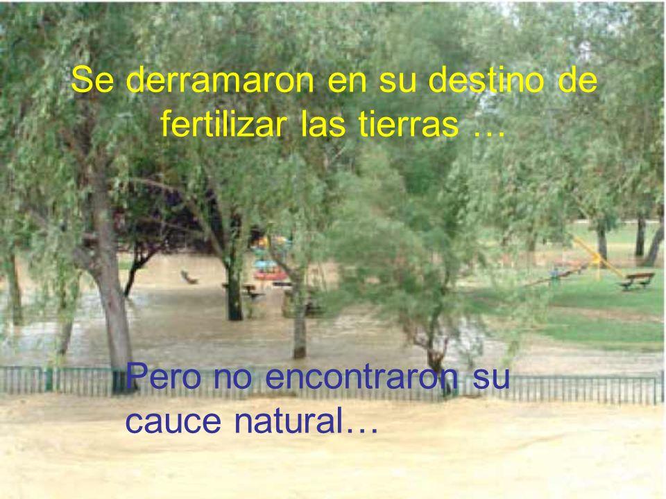 Pero los ríos no saben cuanta agua les está permitido llevar… Tras una gran tormenta..