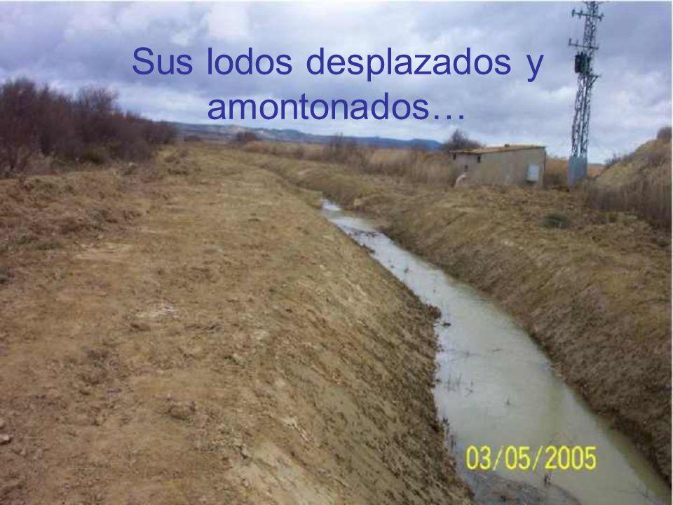 Los malvados ríos fueron dragados….