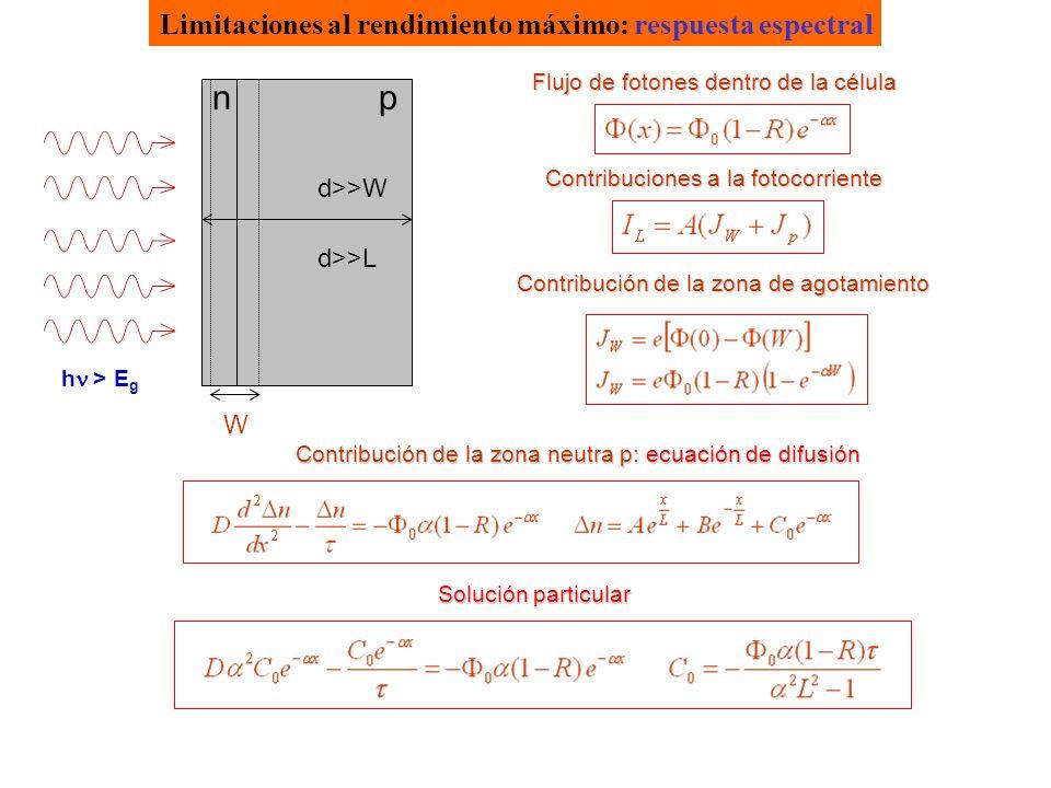 Limitaciones al rendimiento máximo: respuesta espectral h > E g np W d>>W d>>L Flujo de fotones dentro de la célula Contribuciones a la fotocorriente