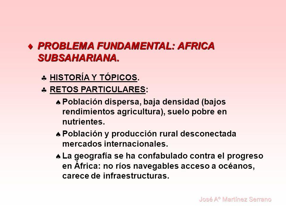 PROBLEMA FUNDAMENTAL: AFRICA SUBSAHARIANA. PROBLEMA FUNDAMENTAL: AFRICA SUBSAHARIANA. HISTORÍA Y TÓPICOS. RETOS PARTICULARES: Población dispersa, baja