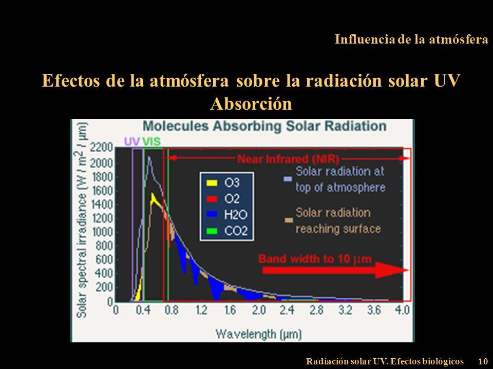 Radiación solar UV. Efectos biológicos10 Influencia de la atmósfera Efectos de la atmósfera sobre la radiación solar UV Absorción
