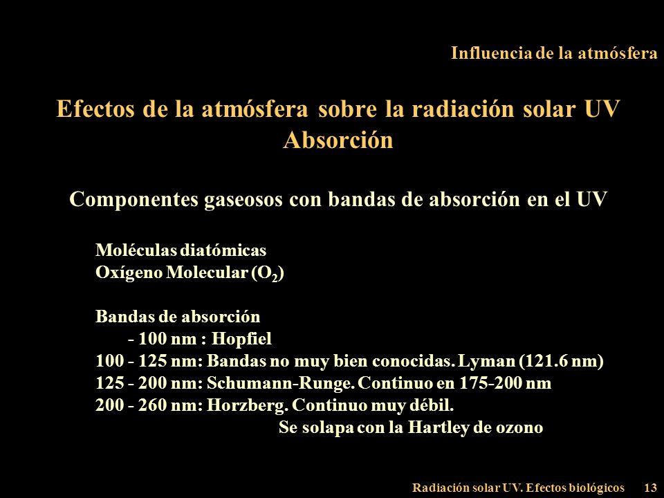 Radiación solar UV. Efectos biológicos13 Influencia de la atmósfera Efectos de la atmósfera sobre la radiación solar UV Absorción Componentes gaseosos