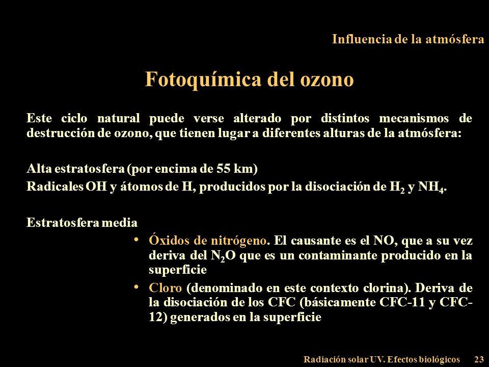 Radiación solar UV. Efectos biológicos23 Influencia de la atmósfera Fotoquímica del ozono Este ciclo natural puede verse alterado por distintos mecani