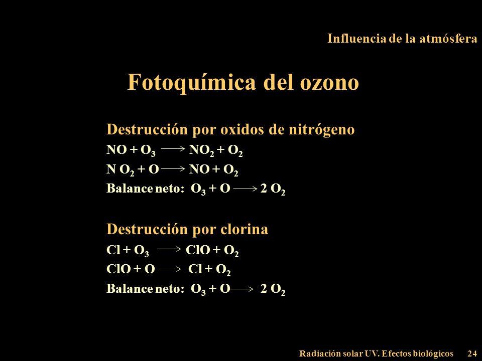 Radiación solar UV. Efectos biológicos24 Influencia de la atmósfera Fotoquímica del ozono Destrucción por oxidos de nitrógeno NO + O 3 NO 2 + O 2 N O