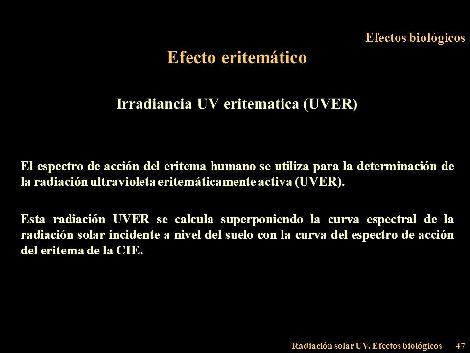 Radiación solar UV. Efectos biológicos47 Efectos biológicos Efecto eritemático Irradiancia UV eritematica (UVER) El espectro de acción del eritema hum