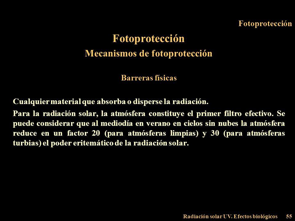 Radiación solar UV. Efectos biológicos55 Fotoprotección Mecanismos de fotoprotección Barreras físicas Cualquier material que absorba o disperse la rad