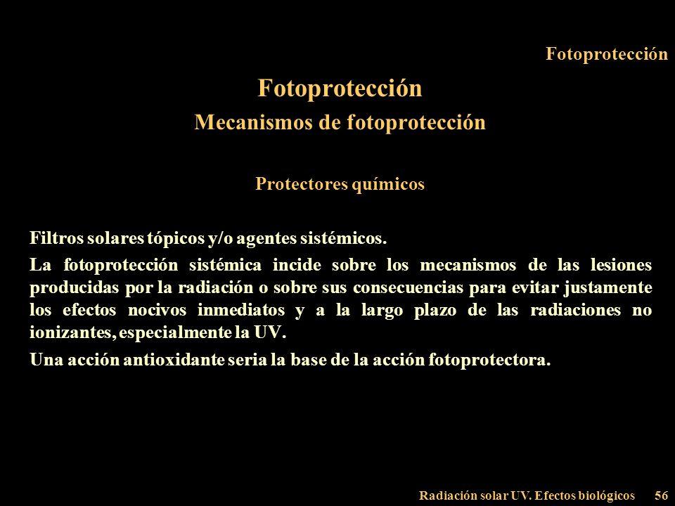 Radiación solar UV. Efectos biológicos56 Fotoprotección Mecanismos de fotoprotección Protectores químicos Filtros solares tópicos y/o agentes sistémic