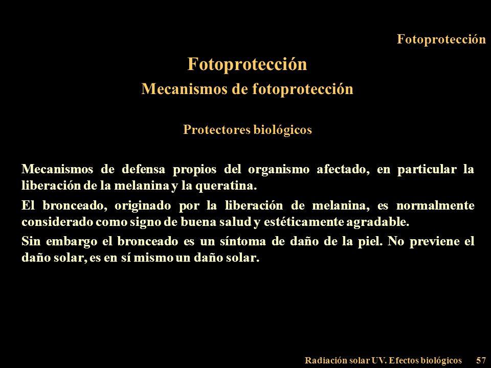 Radiación solar UV. Efectos biológicos57 Fotoprotección Mecanismos de fotoprotección Protectores biológicos Mecanismos de defensa propios del organism