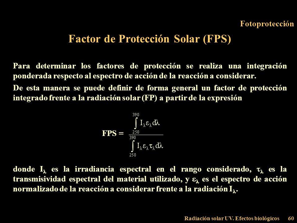 Radiación solar UV. Efectos biológicos60 Fotoprotección Factor de Protección Solar (FPS) Para determinar los factores de protección se realiza una int