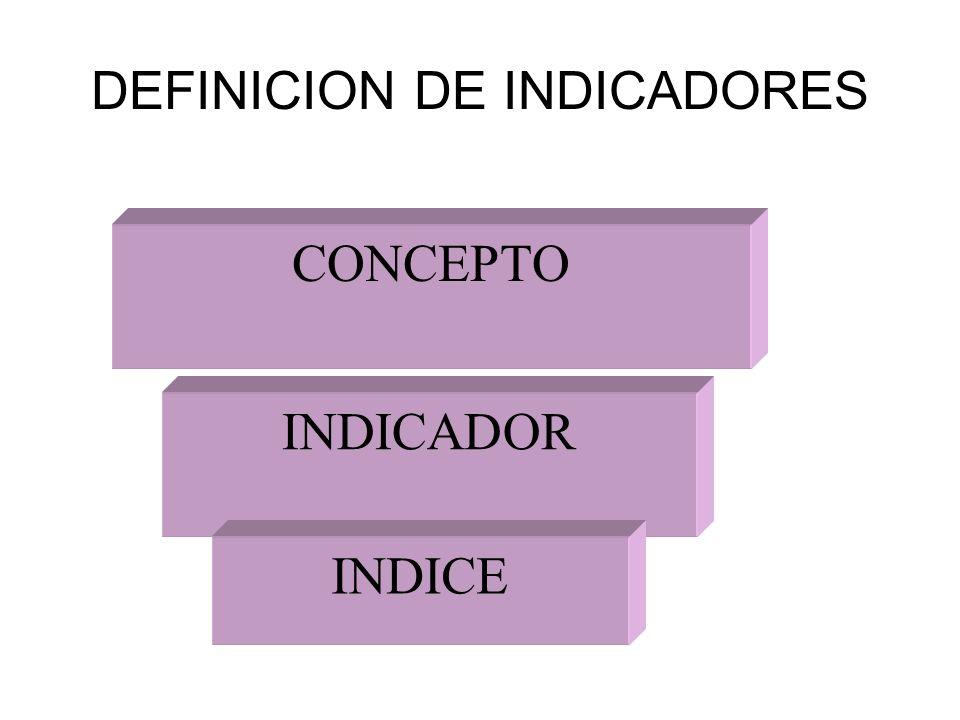 DEFINICION DE INDICADORES CONCEPTO INDICADOR INDICE