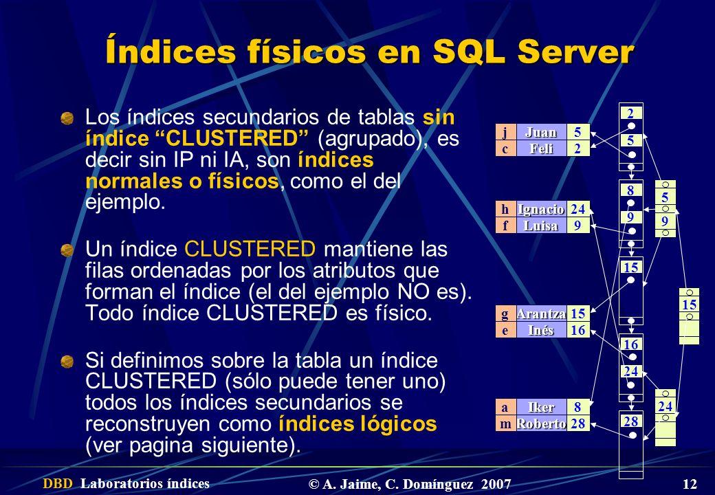 DBD Laboratorios índices © A. Jaime, C.