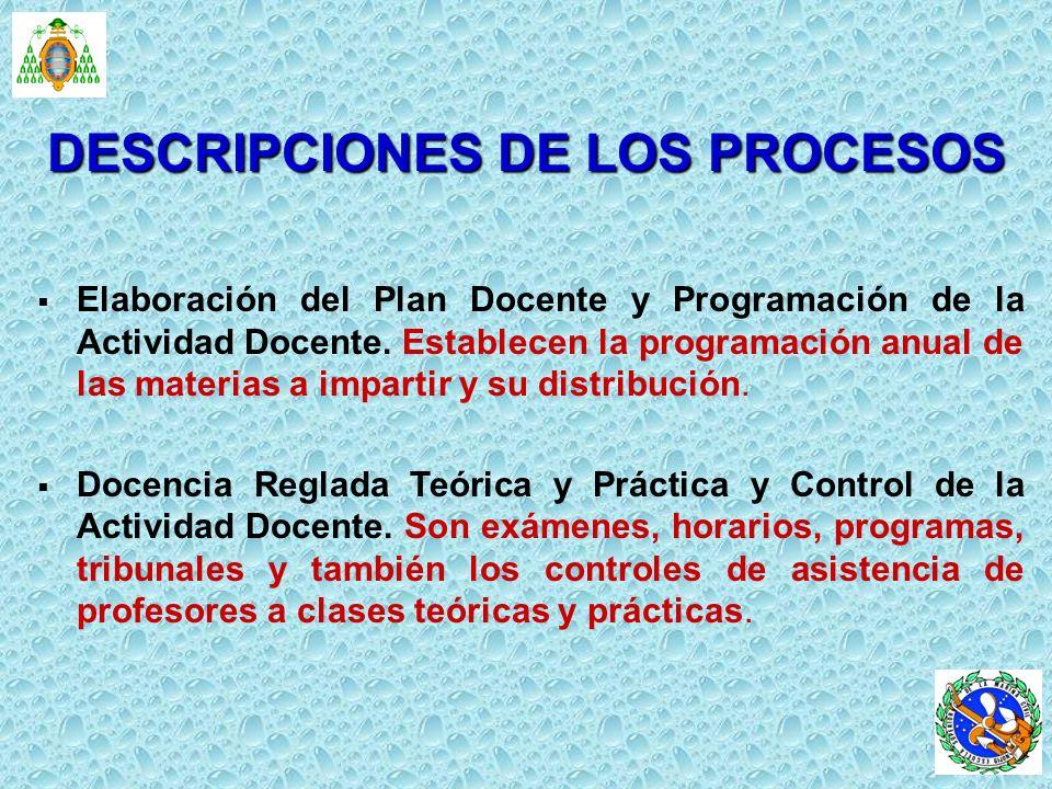 Elaboración del Plan Docente y Programación de la Actividad Docente. Establecen la programación anual de las materias a impartir y su distribución. Do