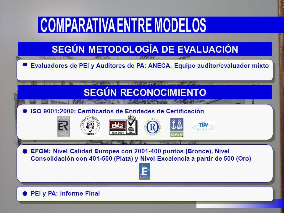 Evaluadores de PEI y Auditores de PA: ANECA. Equipo auditor/evaluador mixto SEGÚN METODOLOGÍA DE EVALUACIÓN PEI y PA: Informe Final SEGÚN RECONOCIMIEN