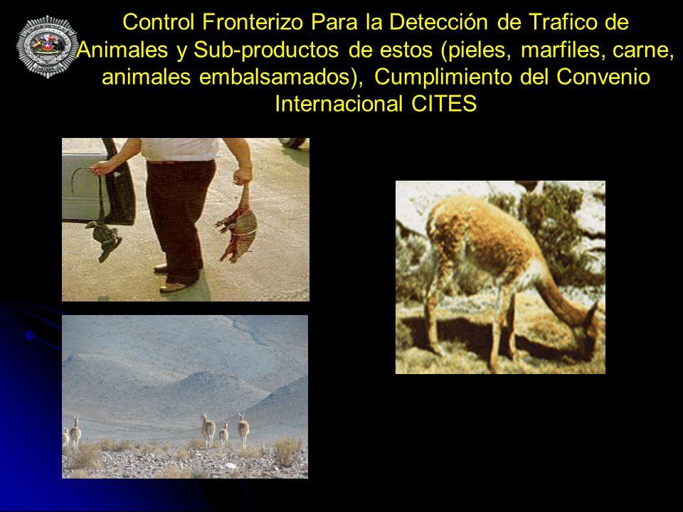 Control Fronterizo Para la Detección de Trafico de Animales y Sub-productos de estos (pieles, marfiles, carne, animales embalsamados), Cumplimiento de