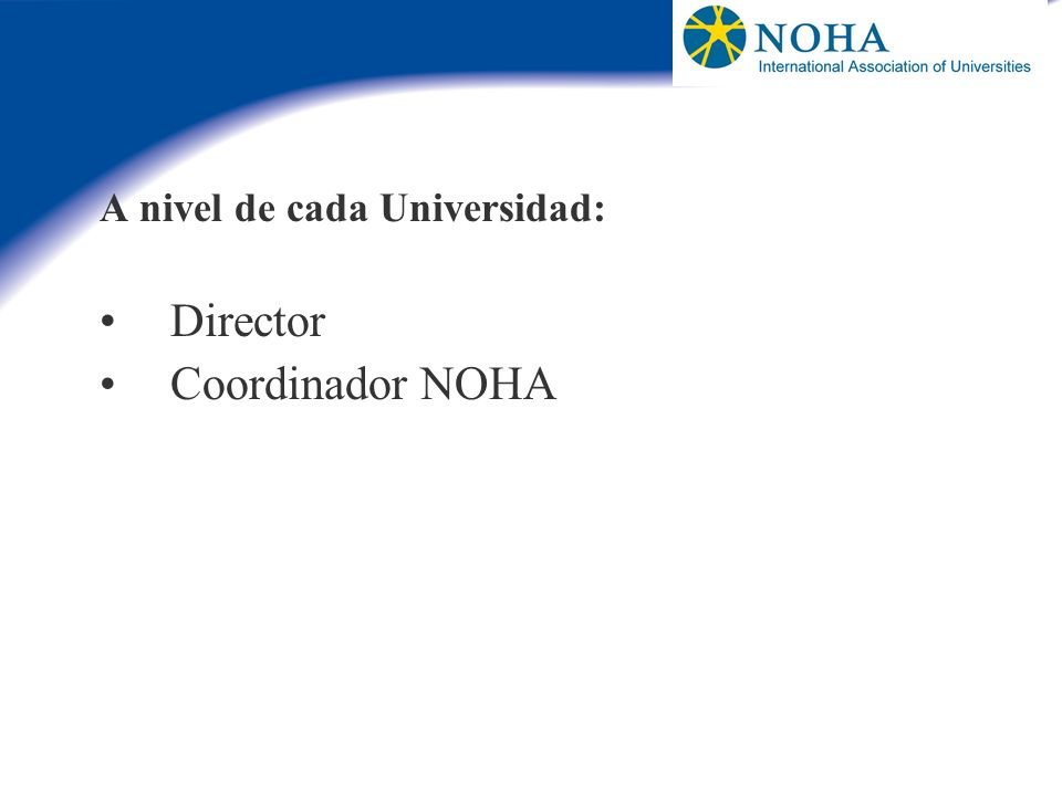 A nivel de cada Universidad: Director Coordinador NOHA