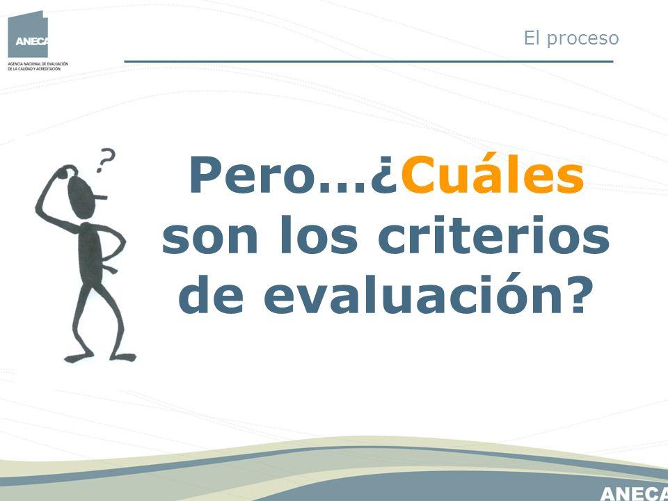 Pero…¿Cuáles son los criterios de evaluación? El proceso