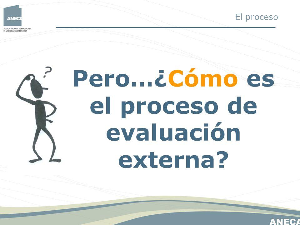 Pero…¿Cómo es el proceso de evaluación externa? El proceso