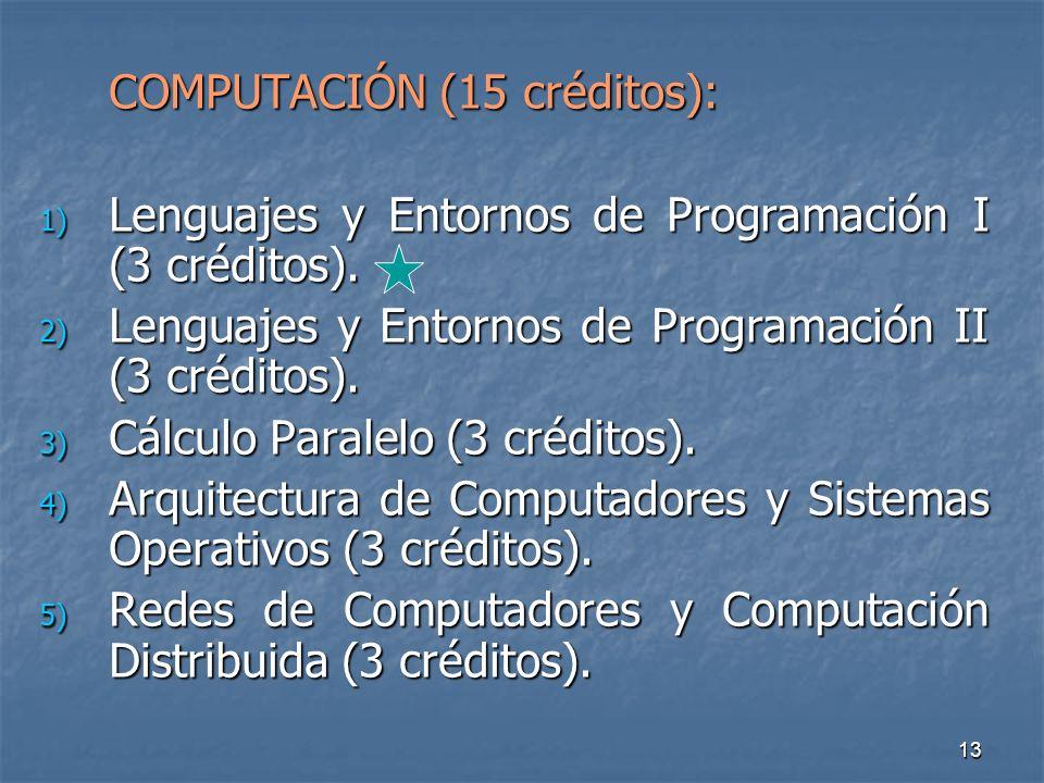 13 COMPUTACIÓN (15 créditos): 1) Lenguajes y Entornos de Programación I (3 créditos).