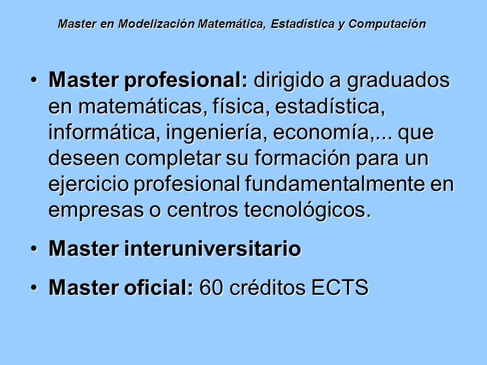Master en Modelización Matemática, Estadística y Computación Master profesional: dirigido a graduados en matemáticas, física, estadística, informática