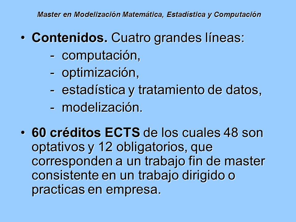 Master en Modelización Matemática, Estadística y Computación Contenidos. Cuatro grandes líneas:Contenidos. Cuatro grandes líneas: - computación, - opt