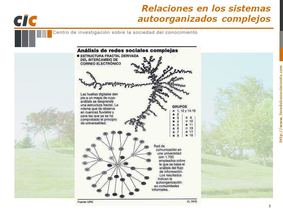 http://www. forodelconocimiento.com 5 Relaciones en los sistemas autoorganizados complejos
