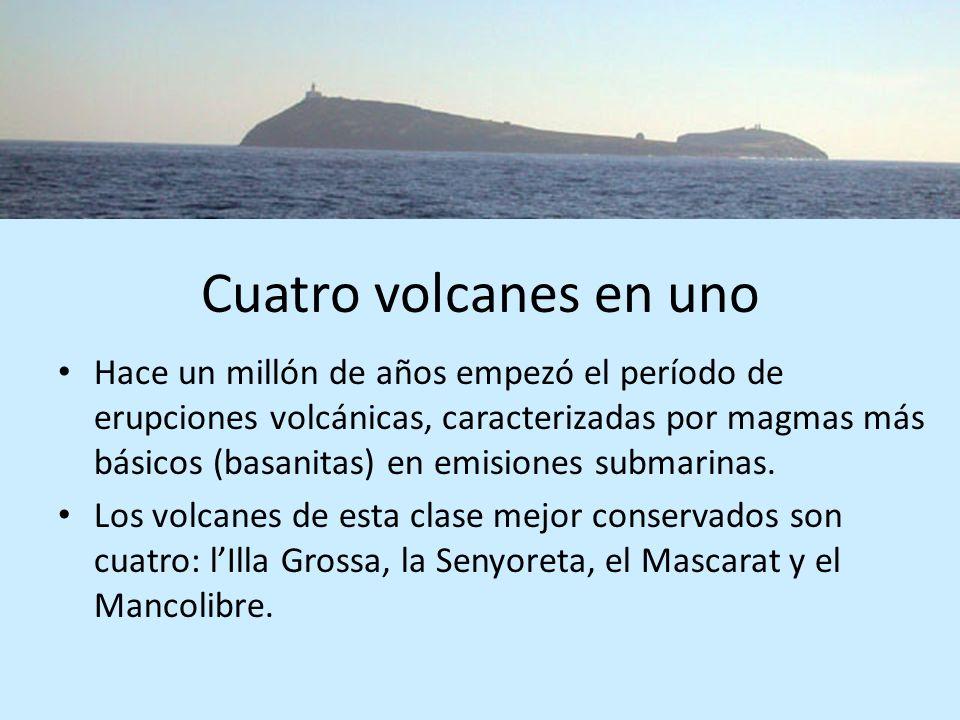 Cuatro volcanes en uno Hace un millón de años empezó el período de erupciones volcánicas, caracterizadas por magmas más básicos (basanitas) en emision