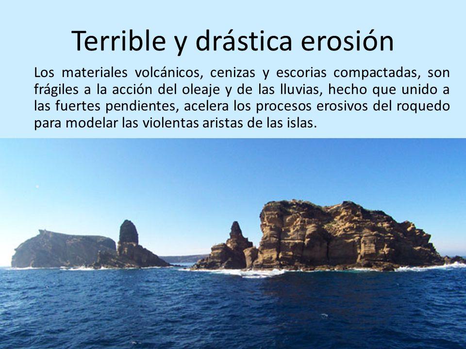 Terrible y drástica erosión Los materiales volcánicos, cenizas y escorias compactadas, son frágiles a la acción del oleaje y de las lluvias, hecho que