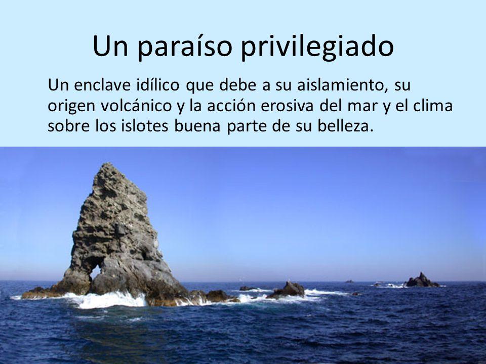 Un paraíso privilegiado Un enclave idílico que debe a su aislamiento, su origen volcánico y la acción erosiva del mar y el clima sobre los islotes bue