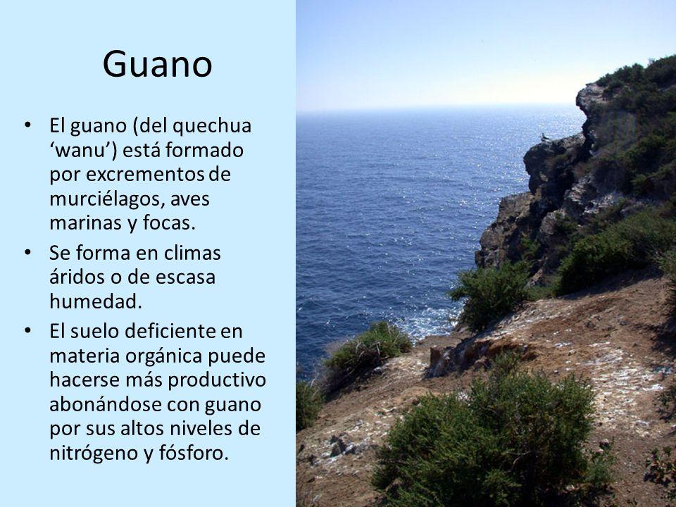 Guano El guano (del quechua wanu) está formado por excrementos de murciélagos, aves marinas y focas. Se forma en climas áridos o de escasa humedad. El