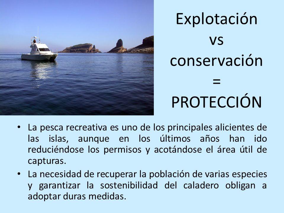 Explotación vs conservación = PROTECCIÓN La pesca recreativa es uno de los principales alicientes de las islas, aunque en los últimos años han ido red