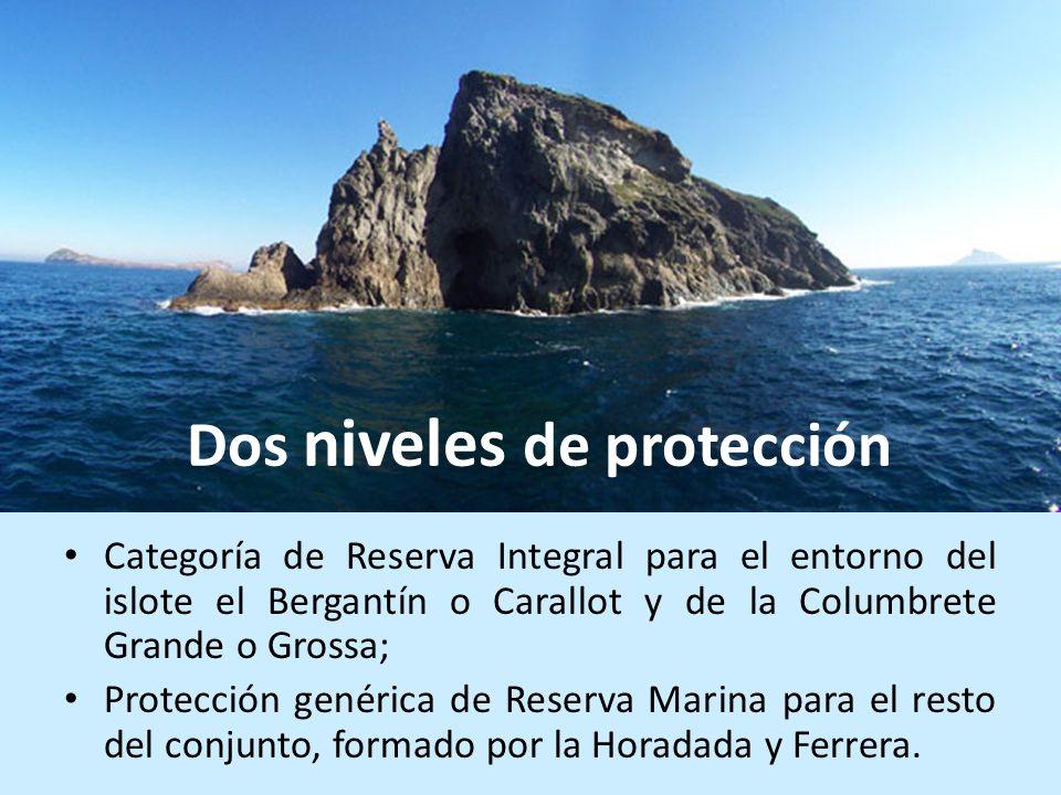 Categoría de Reserva Integral para el entorno del islote el Bergantín o Carallot y de la Columbrete Grande o Grossa; Protección genérica de Reserva Ma