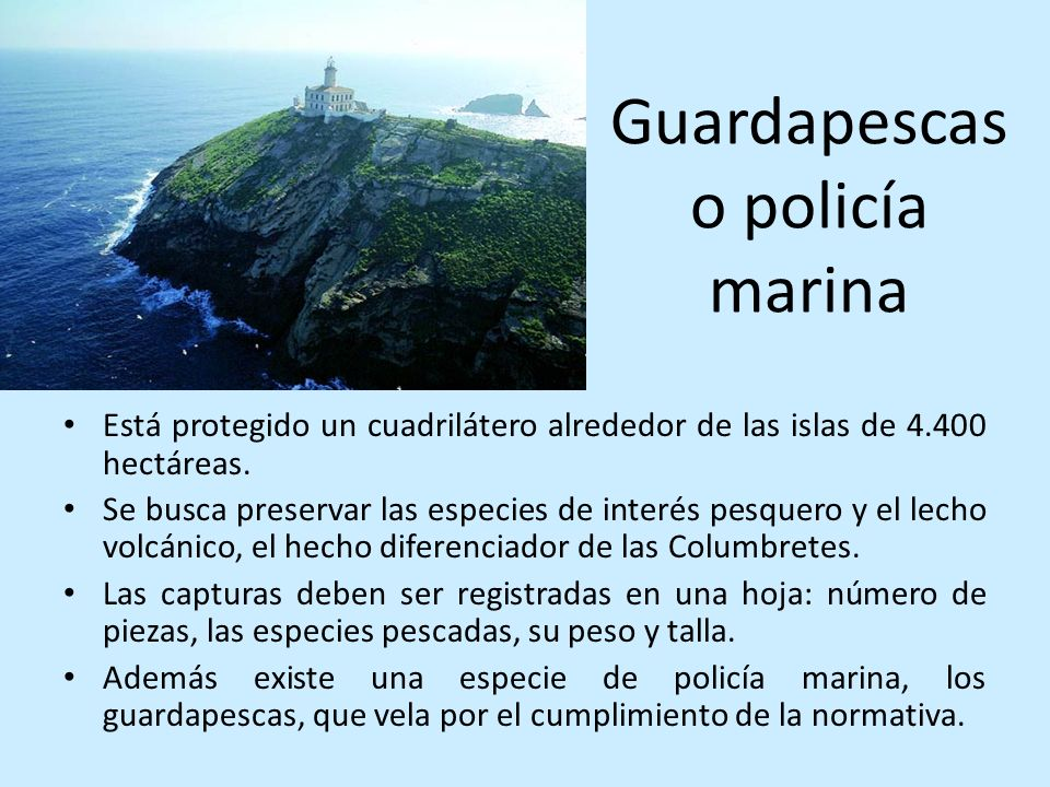 Guardapescas o policía marina Está protegido un cuadrilátero alrededor de las islas de 4.400 hectáreas. Se busca preservar las especies de interés pes