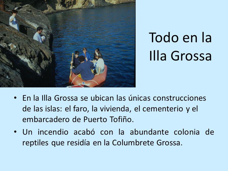 Todo en la Illa Grossa En la Illa Grossa se ubican las únicas construcciones de las islas: el faro, la vivienda, el cementerio y el embarcadero de Pue