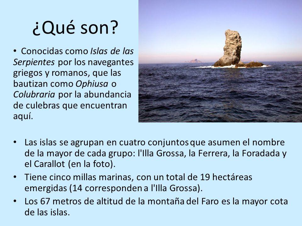 ¿Qué son? Las islas se agrupan en cuatro conjuntos que asumen el nombre de la mayor de cada grupo: l'Illa Grossa, la Ferrera, la Foradada y el Carallo