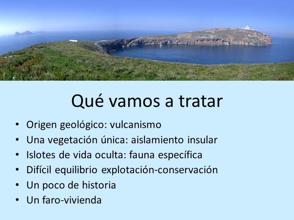 Qué vamos a tratar Origen geológico: vulcanismo Una vegetación única: aislamiento insular Islotes de vida oculta: fauna específica Difícil equilibrio
