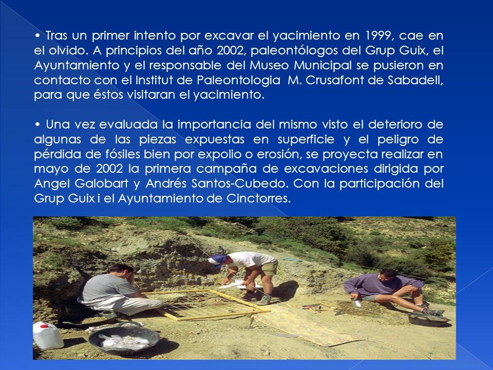 Tras un primer intento por excavar el yacimiento en 1999, cae en el olvido. A principios del año 2002, paleontólogos del Grup Guix, el Ayuntamiento y