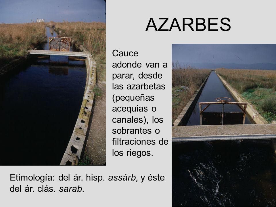 AZARBES Cauce adonde van a parar, desde las azarbetas (pequeñas acequias o canales), los sobrantes o filtraciones de los riegos. Etimología: del ár. h