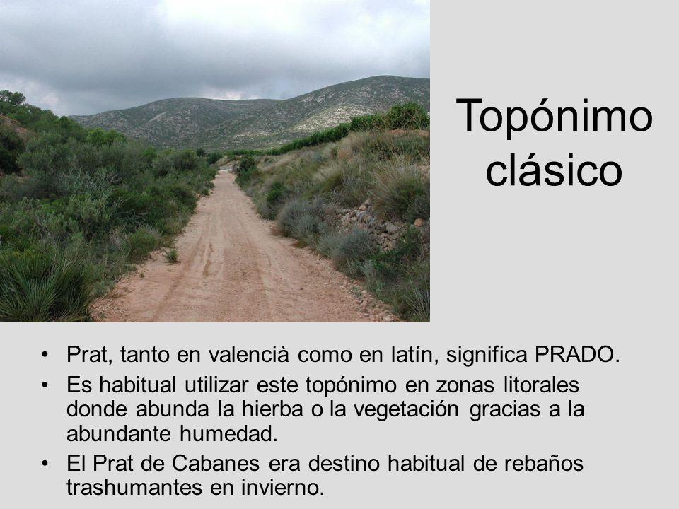 Topónimo clásico Prat, tanto en valencià como en latín, significa PRADO. Es habitual utilizar este topónimo en zonas litorales donde abunda la hierba