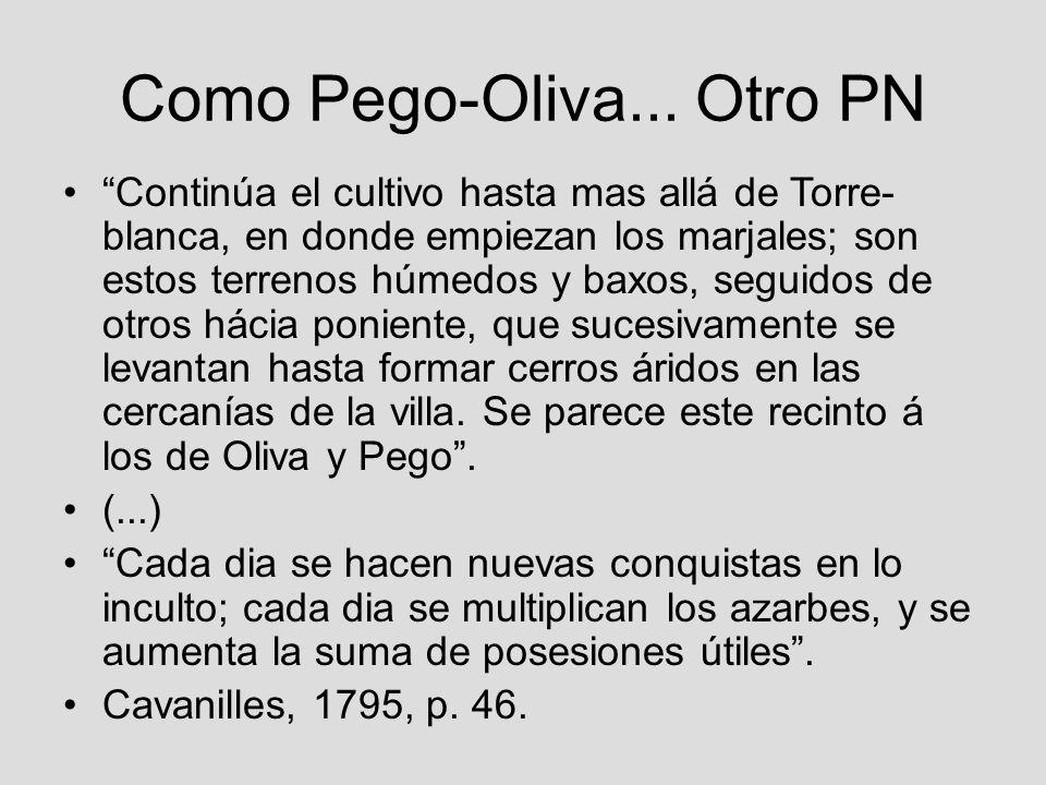 Como Pego-Oliva... Otro PN Continúa el cultivo hasta mas allá de Torre- blanca, en donde empiezan los marjales; son estos terrenos húmedos y baxos, se