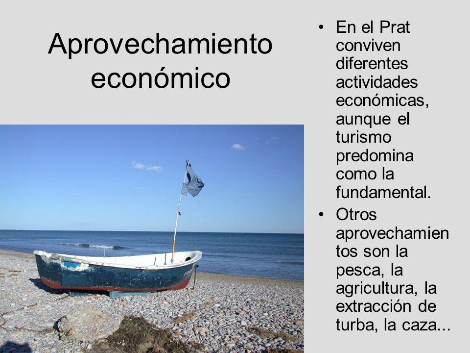 Aprovechamiento económico En el Prat conviven diferentes actividades económicas, aunque el turismo predomina como la fundamental. Otros aprovechamien