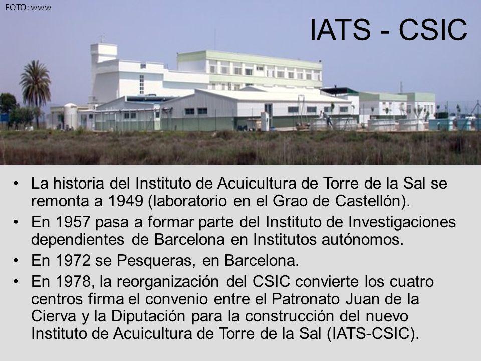 La historia del Instituto de Acuicultura de Torre de la Sal se remonta a 1949 (laboratorio en el Grao de Castellón). En 1957 pasa a formar parte del I
