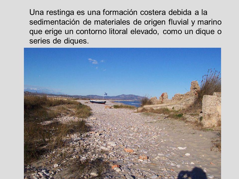 Una restinga es una formación costera debida a la sedimentación de materiales de origen fluvial y marino que erige un contorno litoral elevado, como u
