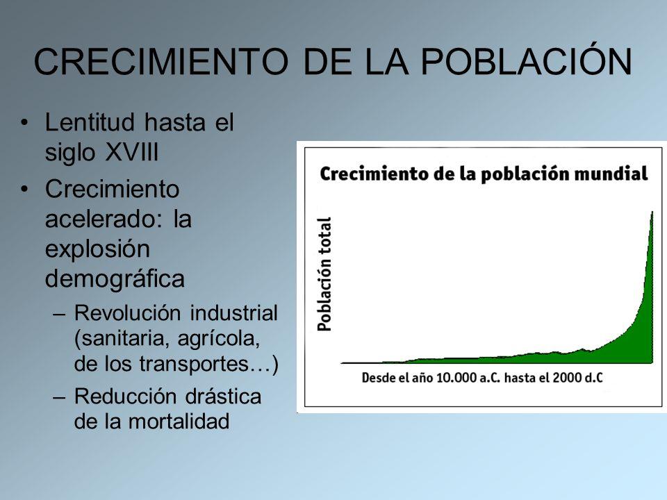CRECIMIENTO DE LA POBLACIÓN Lentitud hasta el siglo XVIII Crecimiento acelerado: la explosión demográfica –Revolución industrial (sanitaria, agrícola,