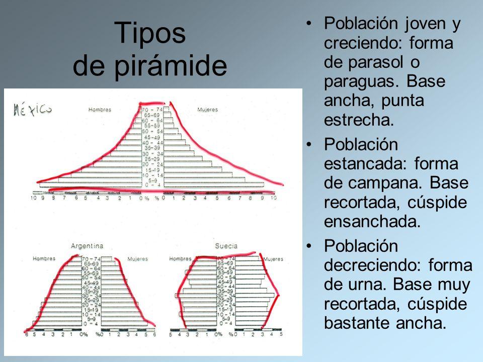 Tipos de pirámide Población joven y creciendo: forma de parasol o paraguas. Base ancha, punta estrecha. Población estancada: forma de campana. Base re